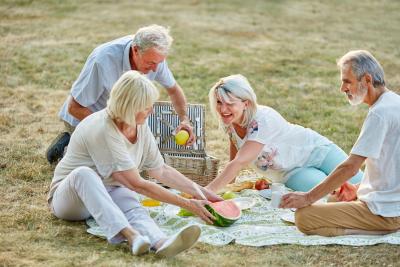 group of senior having picnic
